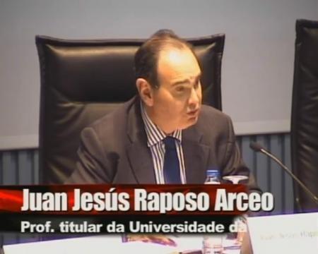 Juan Jesús Raposo Arceo, Profesor titular da Universidade da Coruña.